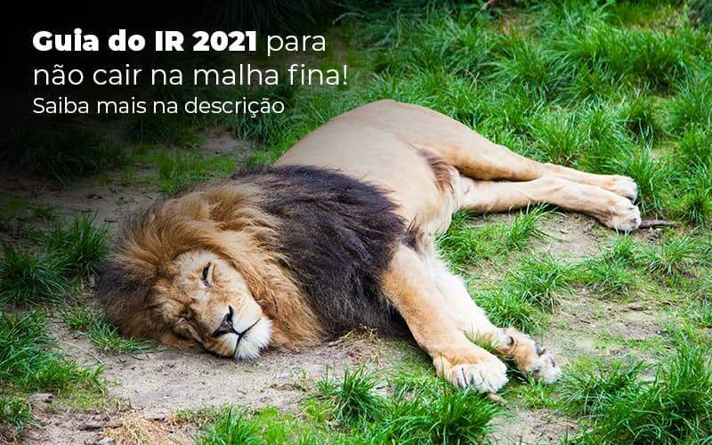 Guia Ir 2021 Para Nao Cair Na Malha Fina Saiba Mais Na Descricao Post 1 - Contabilidade em Vila Amália - SP | Lyra Contábil